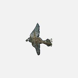 Aplicação Gold Bird (G249)