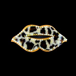 Aplicação lábios onça-pintada (N067)