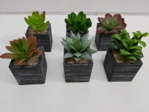 Plantas Mini Suculentas Artificiais Vaso Preto