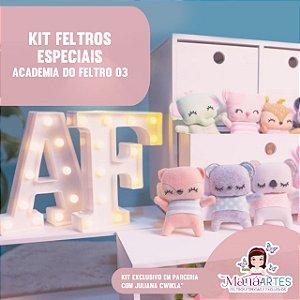KIT DE FELTROS ACADEMIA DO FELTRO 03 by JULIANA CWIKLA