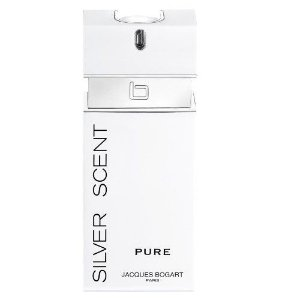 Perfume Silver Scent Pure Masculino EDT 100ml