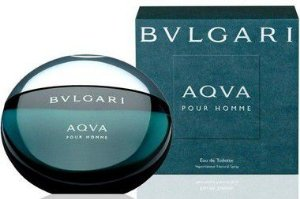 Perfume Bvlgari Aqva Pour Homme Masculino EDT 100 ml