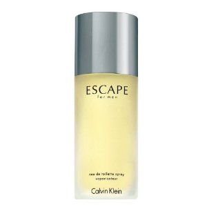 Perfume Calvin Klein Escape Masculino EDT 100ML