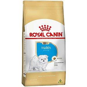 Ração Royal Canin Puppy Maltês para Cães Filhotes