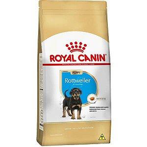 Ração Seca Royal Canin Puppy Rottweiler para Cães Filhotes 12 Kg