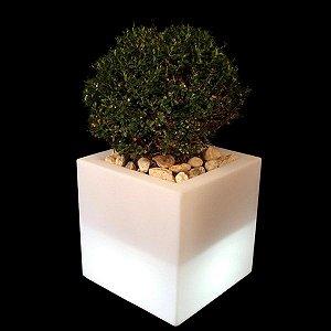 Luminária de Jardim Cachepô Ouvert Vase Cor Natural Usare US73