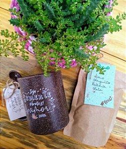 Kit Chá Ecológico
