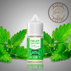 Mint Salt - 30ml