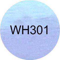 FILME HOLOGRÁFICO ARCO IRIS (WH301)