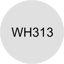 FILME HOLOGRÁFICO TRANSPARENTE (WH313)