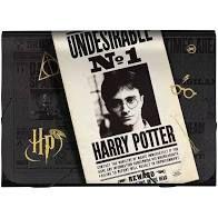 Pasta Sanfonada A4 Harry Potter- Dac