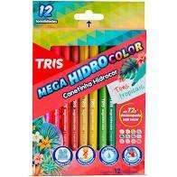Caneta Hidrocor Tons Tropicais C/12 - Tris