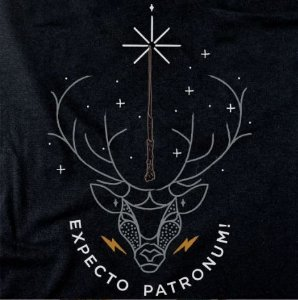 Camiseta Harry Potter G - Zona