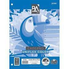 Caderno Esp Univ Cd 01m 96f Uniflex Color -jandaia