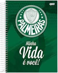 Caderno Esp Univ Cd 12m 240f Palmeiras - Jandaia