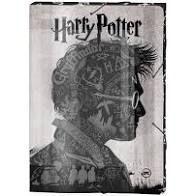 Pasta Aba Elastico Pol Harry Potter - Dac