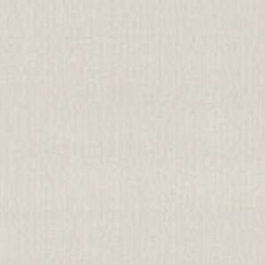 Papel de Parede Liso Off-White