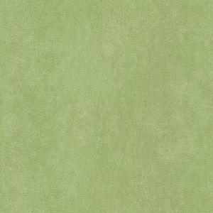 Papel de Parede Liso Verde Musgo