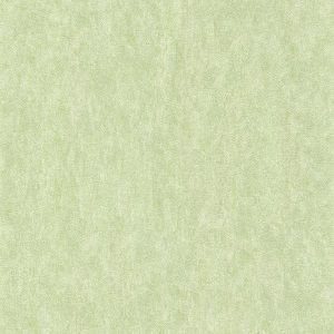 Papel de Parede Liso Verde Claro