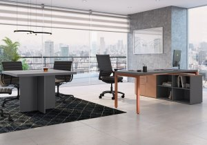 Mesa Diretor Concept