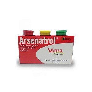 Arsenatrol Tonico para Equinos 20mL - Vansil