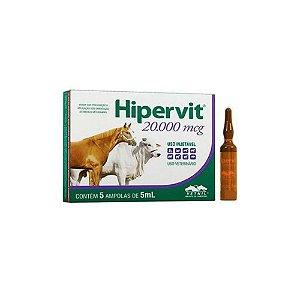 Hipervit 20.000 mcg - 01 ampola - Vetnil