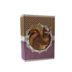 Caixa Livro Esquilo