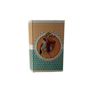 Caixa Livro Cofre Pássaro