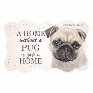 Placa Digital Pug