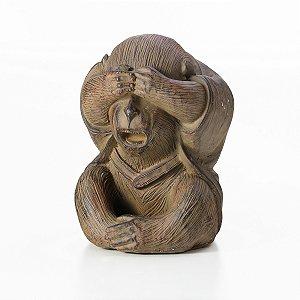 Macaco Não Vejo