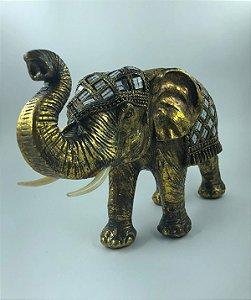Elefante Dourado Decorado