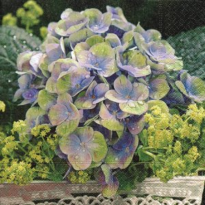 Pacote 20 Guardanapos Romantic Flowerage