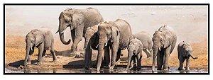 Quadro Nur Elefantes