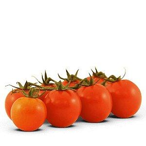Pori (pacote c/ 12 sementes)