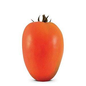 Kaiapó - Italiano (12 sementes / 0,02g)