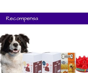 Oferta Kit 3 – Kit Recompensa, Ideal Para Treinar Seu Pet
