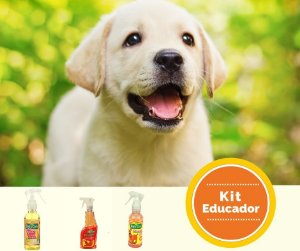 Kit Educador de Xixi