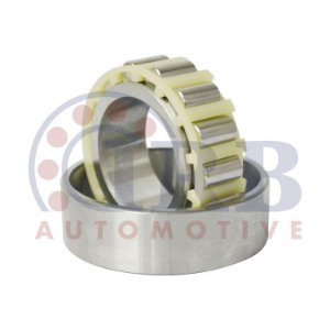 Rolamento Cilindrico Roda Traseira Kombi 1.4 8V 05 / ... / 1600 8V 78 / ... ( Externo ) - CIB14526