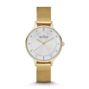 Relógio Skagen Anita Feminino - Skw2150/4Kn
