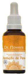 Floral Dr Flowers Momento de Reequilibrio Alimentar visando a Redução de Peso 31 ml