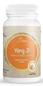 Folium et Herba Cynare (Alcachofra - Yáng Ji) 250 mg 60 Cápsulas