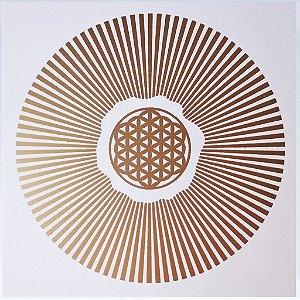 Placa Radiônica Sol Da Vida - Em PVC