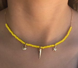 Colar chocker com dente de sabre, estrela do mar e concha