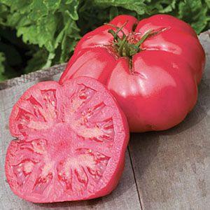 Tomate Caspian Pink: 20 Sementes