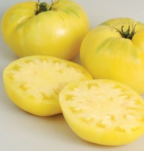 Tomate Great White Beefsteak ORGÂNICO: 20 Sementes
