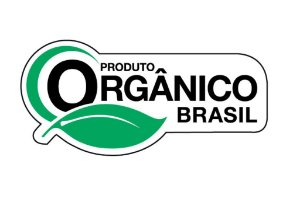 Cebolinha Todo Ano Orgânico Brasil 0,4g