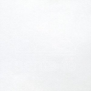 Feltro Liso Branco V447-035