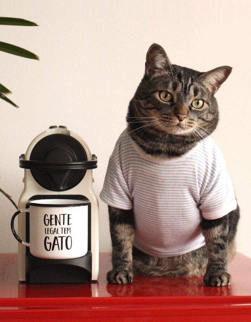 112e2d2abc Caneca Gente Legal - Cansei de Ser Gato
