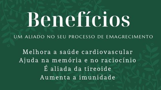 BeneficiosCastanhadoPara