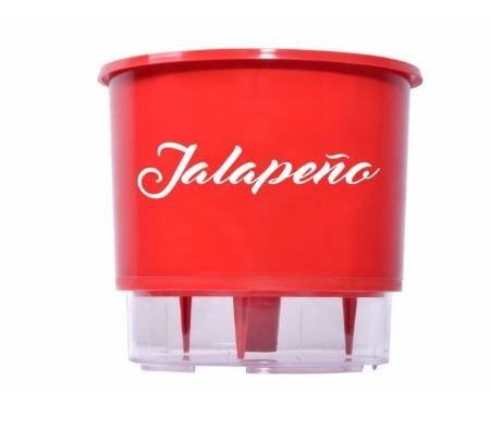 Pimenta Jalapeno